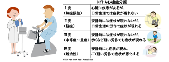NYHA心機能分類 I度(無症候性)心臓に疾患があるが、日常生活では症状が現れない II度(軽度)安静時には症状が現れないが、日常生活の労作で症状が現れる III度(中等度から重度)安静時には症状が現れないが、歩くなど軽い労作でも症状が現れる IV度(難治性)安静時でも症状が現れ、ごく軽い労作で症状が悪化する