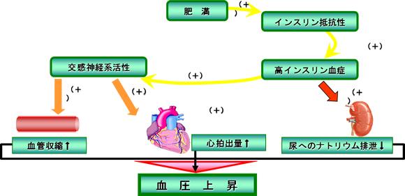 循環器内科・内科 まつばらクリニック|心臓専門医 循環器内科 不整脈 心筋梗塞 京都市 五条大宮