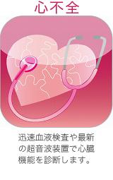 心不全 迅速血液検査や最新の超音波装置で心臓機能を診断します。